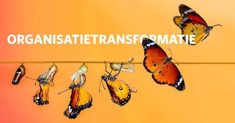 organisatie transformatie